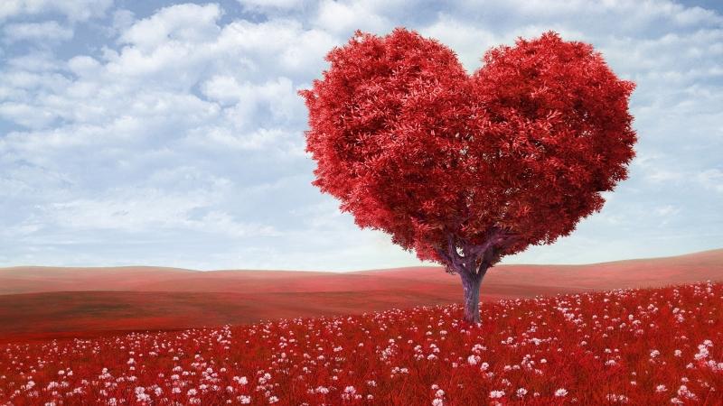Svetovni-dan-srca